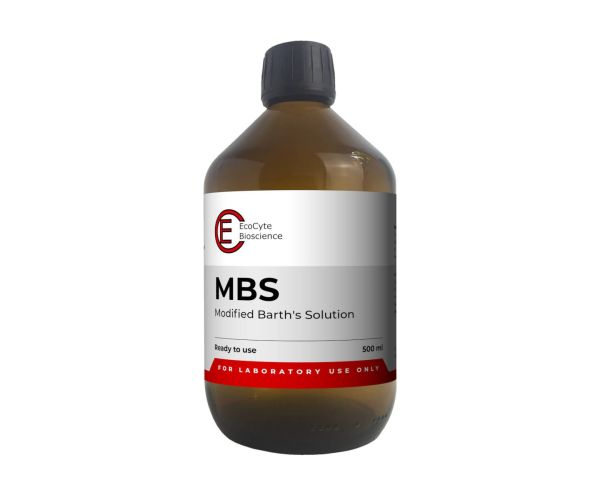 MBS - Modified Barths Solution (500 ml)